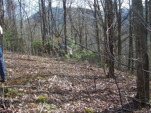 26 Appaloosa Trail #26, Waynesville, NC 28785 (#3200990) :: LePage Johnson Realty Group, LLC