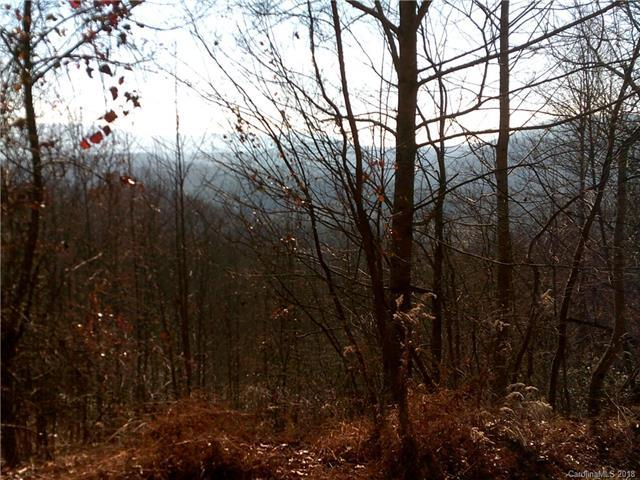 LOT 37 Rambling Trail, Hendersonville, NC 28739 (#3273998) :: LePage Johnson Realty Group, LLC