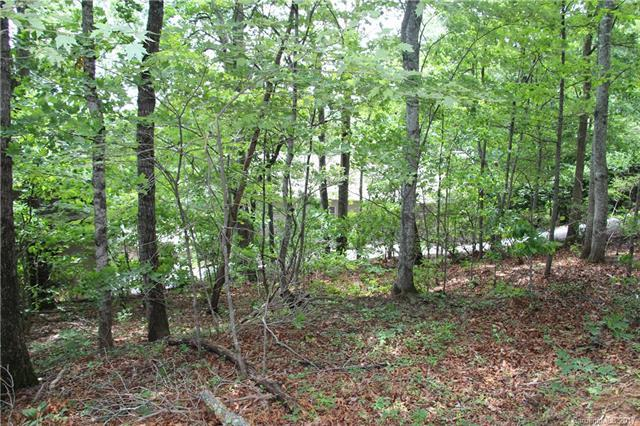 2 Red Plum Lane #1, Black Mountain, NC 28711 (#3294345) :: Rinehart Realty
