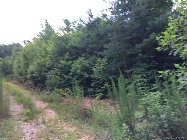 Lot 35 Cliff Trail #35, Marion, NC 28752 (#3302094) :: Besecker Homes Team