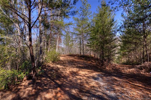 184 Rock Ridge, Lake Lure, NC 28746 (#3351131) :: Carlyle Properties
