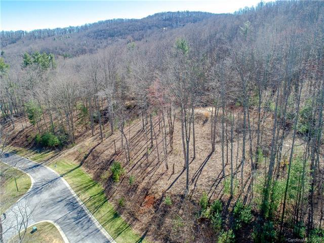 478 Barrington Drive #122, Asheville, NC 28803 (#3362531) :: Zanthia Hastings Team