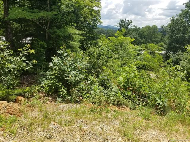 9 Samuel Ashe Drive 48A, Asheville, NC 28805 (#3406954) :: Rinehart Realty