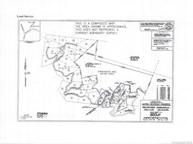 000 Laurel Mountain Road, Black Mountain, NC 28711 (#3419383) :: Puffer Properties