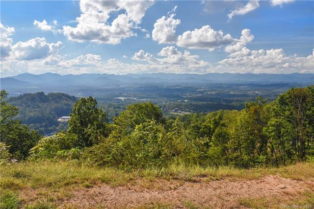 175 Serenity Ridge Trail #19, Asheville, NC 28804 (#3422120) :: Team Southline