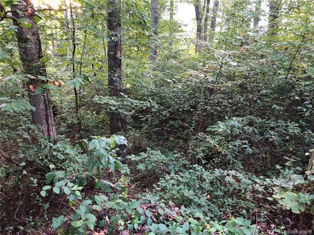 85 Denman Drive, Lake Junaluska, NC 28745 (#3439538) :: Besecker Homes Team