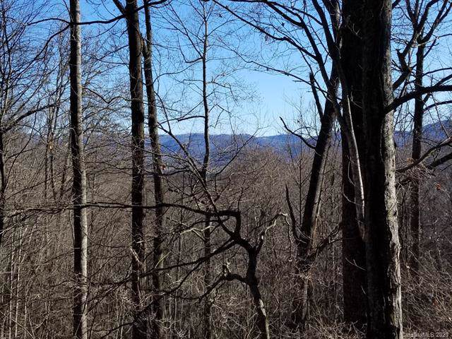 Lot 69 Falling Glen Drive, Waynesville, NC 28785 (#3523638) :: Keller Williams Professionals