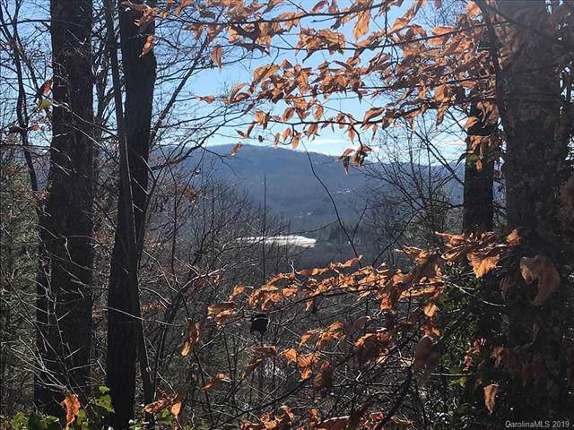 1018 Willow Ridge Drive 23A, Hendersonville, NC 28792 (#3554498) :: Rinehart Realty