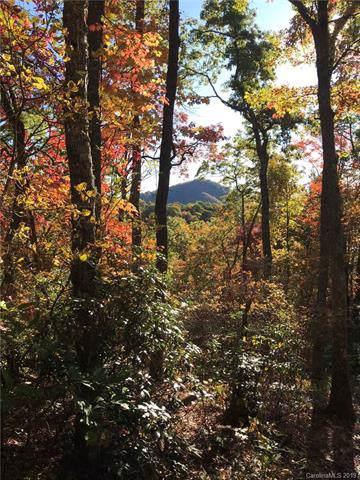 0148 Preserve Road #148, Sylva, NC 28779 (#3556700) :: Charlotte Home Experts