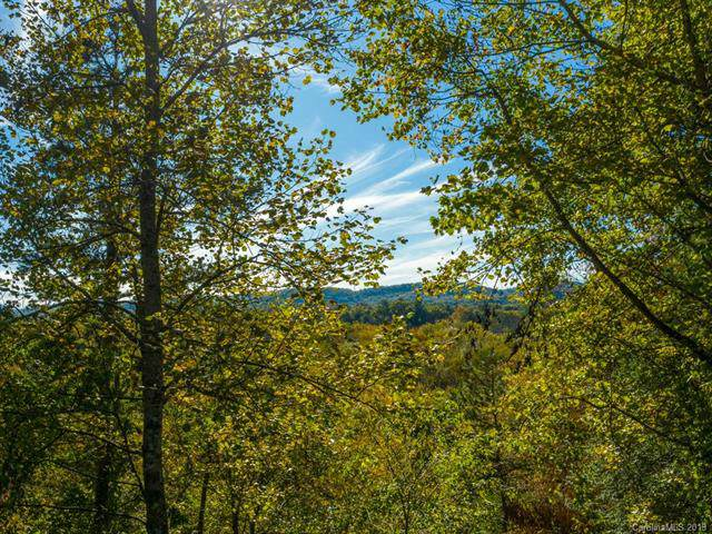 00 Plantation Drive #24, Hendersonville, NC 28792 (#3564293) :: The Ramsey Group