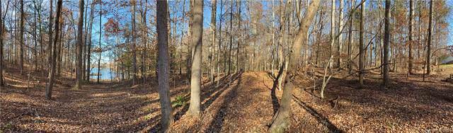 4387 Beechwood Trail, Terrell, NC 28682 (#3569507) :: LePage Johnson Realty Group, LLC