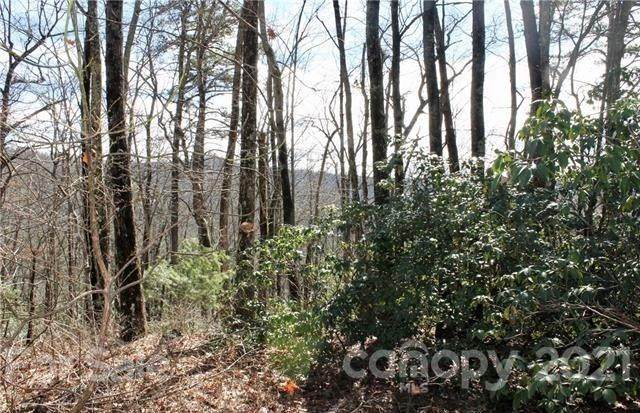 TBD East View Road 16R, Brevard, NC 28712 (#3603656) :: LePage Johnson Realty Group, LLC
