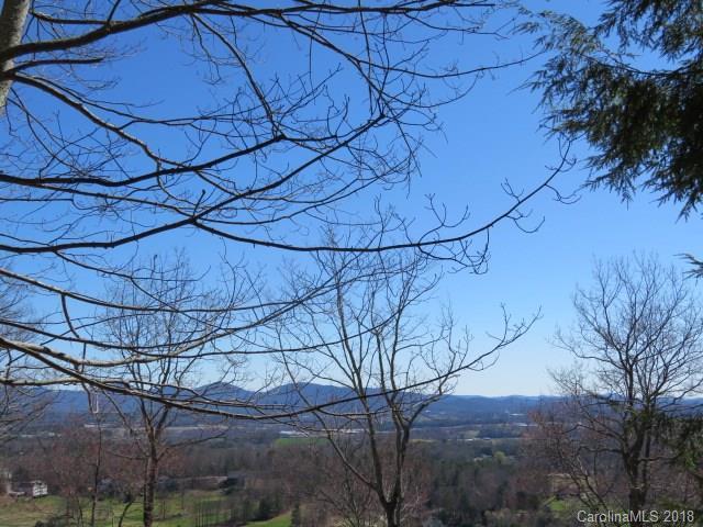 15 Wild Dogwood Trail Lot #80, Mills River, NC 28759 (#3160361) :: Rinehart Realty