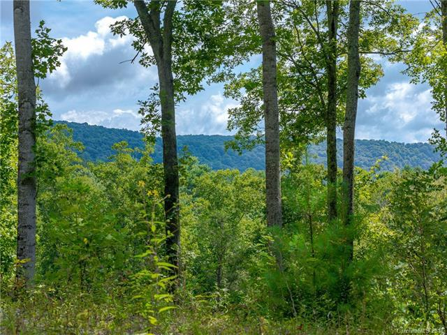 478 Barrington Drive #122, Asheville, NC 28803 (#3362531) :: LePage Johnson Realty Group, LLC