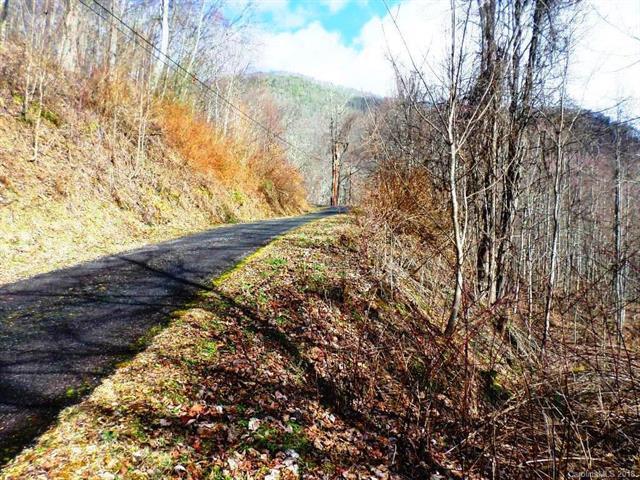 23 Chipmunk Circle #23, Waynesville, NC 28785 (#3363157) :: Exit Mountain Realty