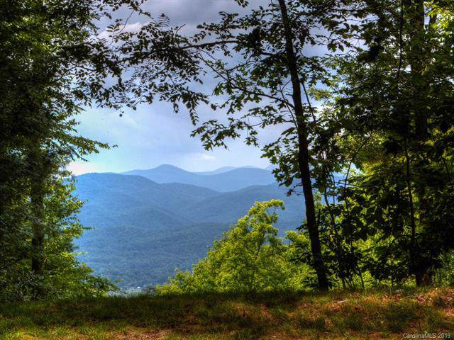 8B The Reserve Road, Pisgah Forest, NC 28768 (#3532647) :: Charlotte Home Experts