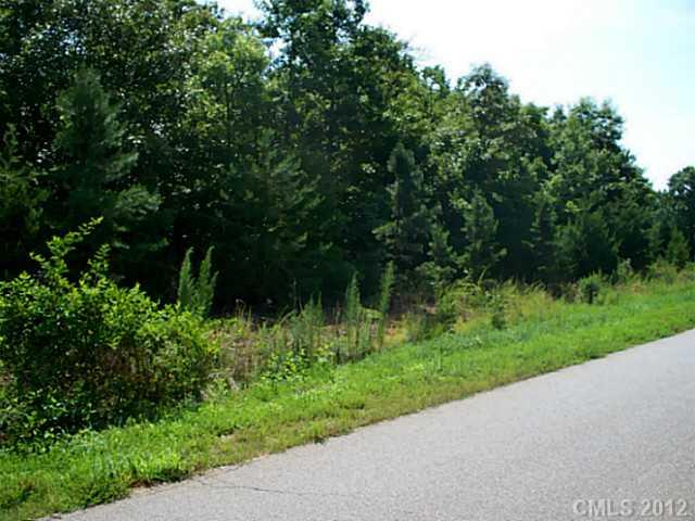 Lot 35 Bison Trail, Maiden, NC 28650 (#618468) :: LePage Johnson Realty Group, LLC