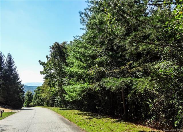 36 Elk Mountain Ridge, Asheville, NC 28804 (#3437787) :: Francis Real Estate