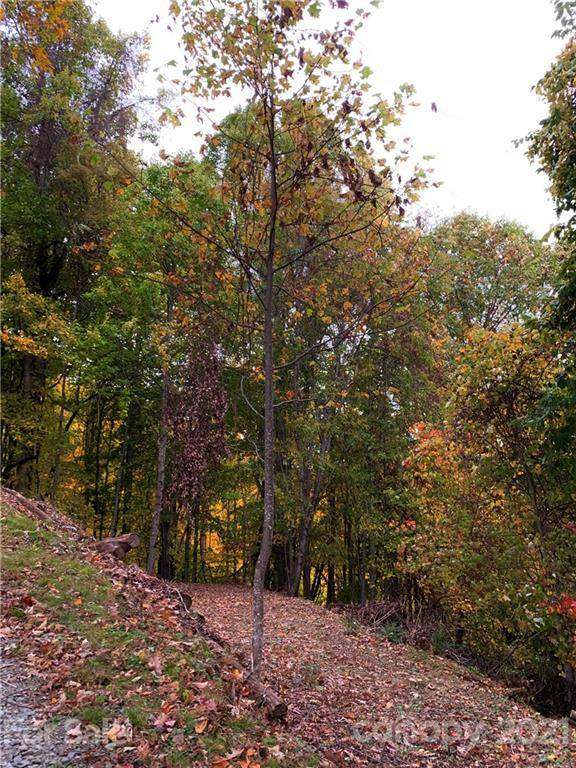 375 Buck Drive, Hot Springs, NC 28743 (#3766358) :: LePage Johnson Realty Group, LLC