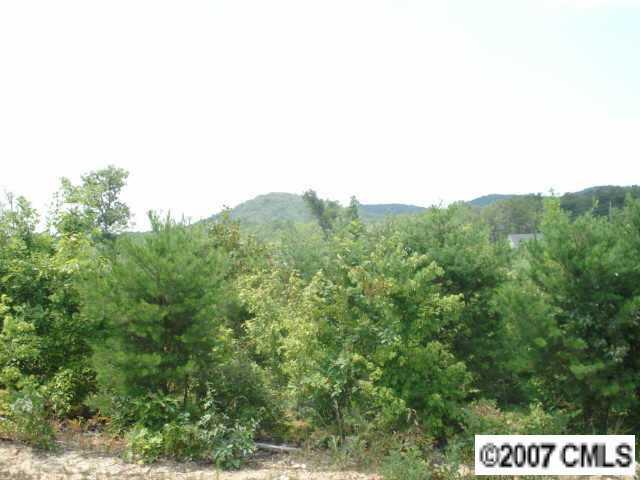 2121 Pinnacle View Drive, Kings Mountain, NC 28086 (#703251) :: RE/MAX Four Seasons Realty