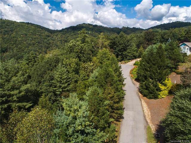 36 Elk Mountain Ridge, Asheville, NC 28804 (#3437787) :: Carlyle Properties