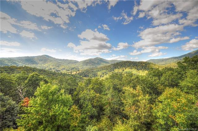 316 Mountain Laurel, Asheville, NC 28805 (#3369400) :: Odell Realty