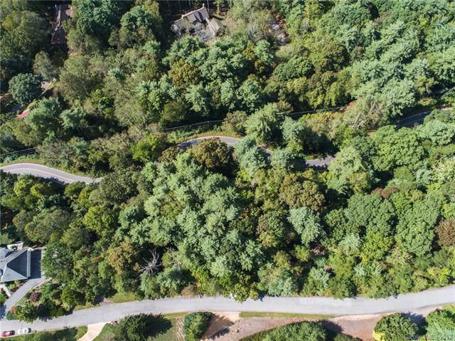 36 Elk Mountain Ridge, Asheville, NC 28804 (#3437787) :: Keller Williams Professionals