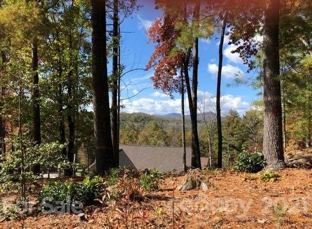 325 Jonathan Creek Drive #22, Etowah, NC 28729 (#3622036) :: The Snipes Team   Keller Williams Fort Mill