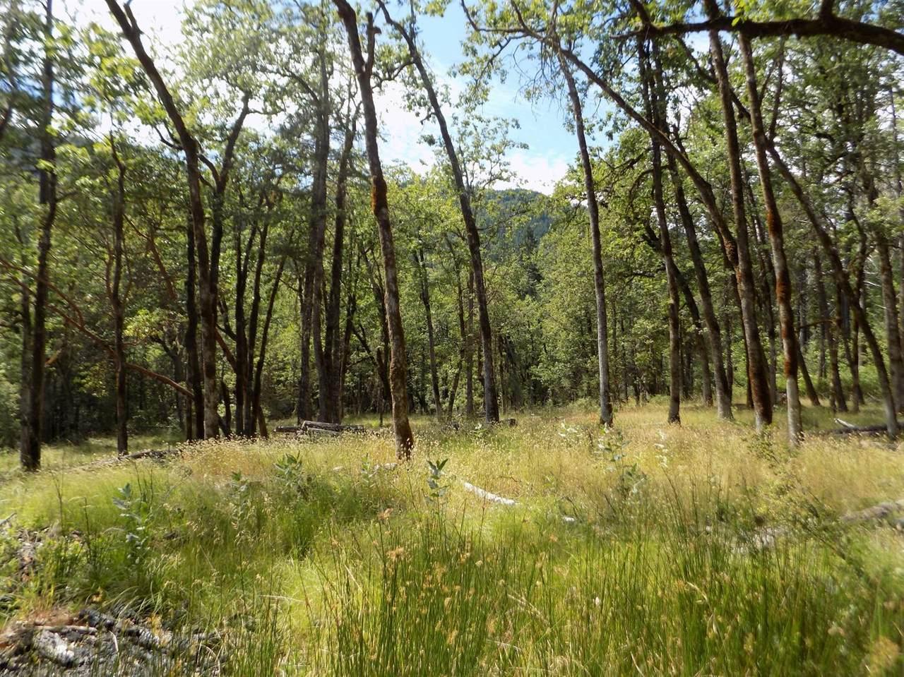 0 Ditch Creek Tl204 Road - Photo 1