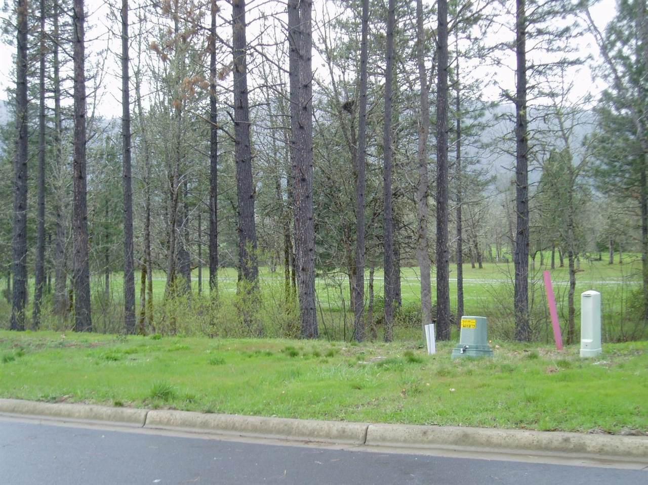 1302 Golf Club Drive - Photo 1