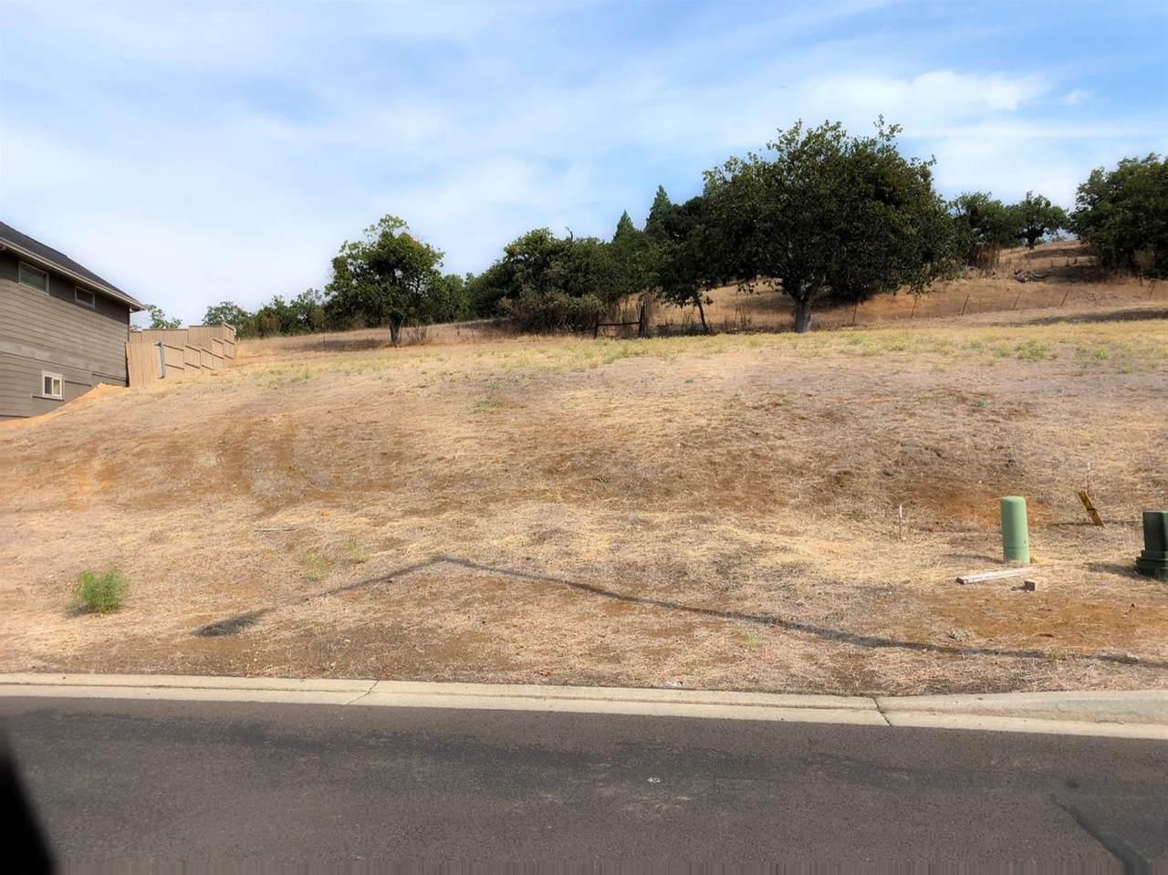 1007 Ruby Meadows Drive - Photo 1