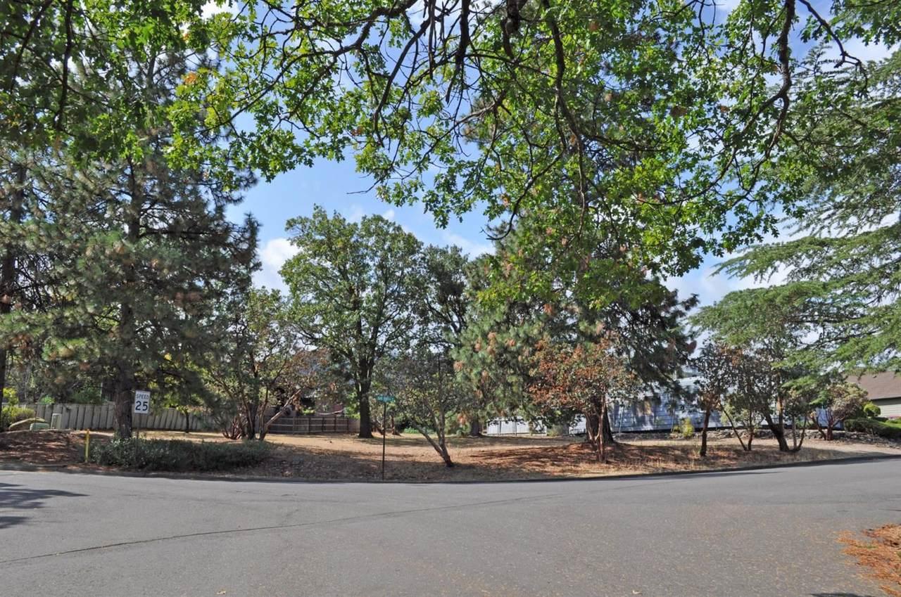 0 Oak Knoll Drive - Photo 1