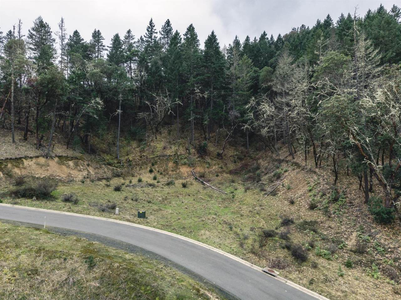 474 View Top Drive - Photo 1