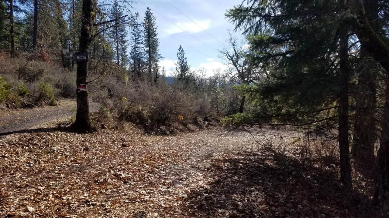 12657 Mc Neil Creek Road - Photo 1