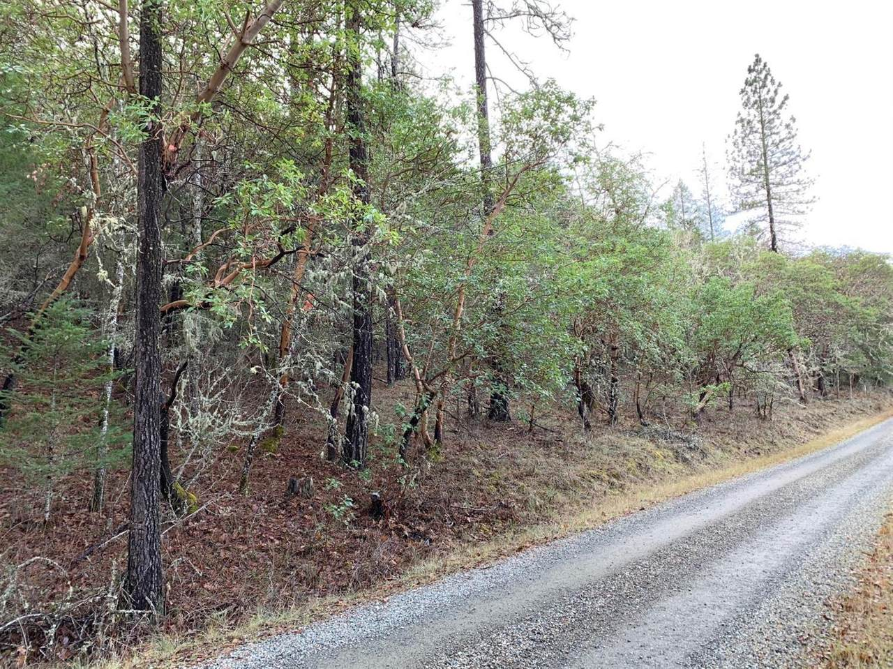 0 Cumberland Drive - Photo 1