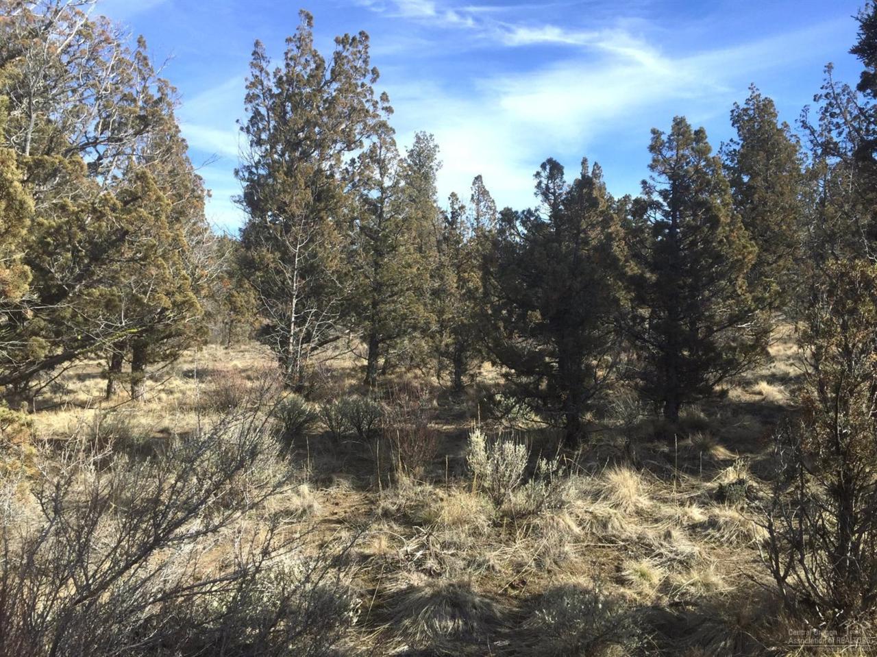 14843 SE Gatling Way, Prineville, OR 97754 (MLS #201601650) :: Birtola Garmyn High Desert Realty
