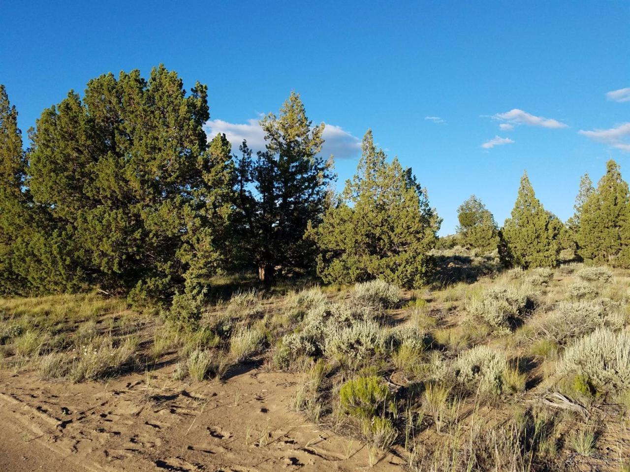 0 SE Cc Dunham Road Parcel 1, Prineville, OR 97754 (MLS #201606568) :: Birtola Garmyn High Desert Realty