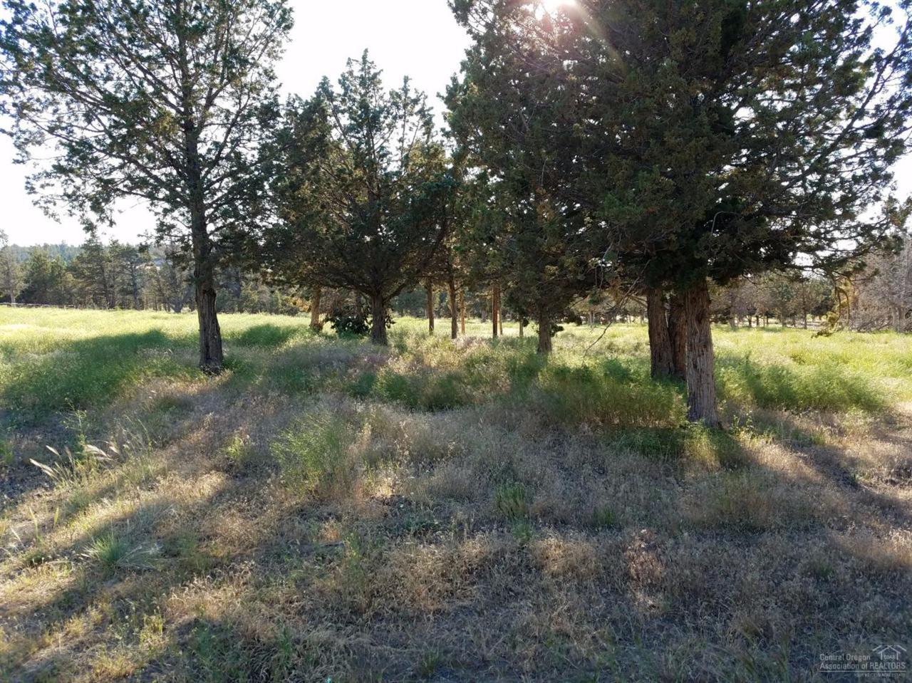 7761 SE Thompson Court, Prineville, OR 97754 (MLS #201606583) :: Birtola Garmyn High Desert Realty