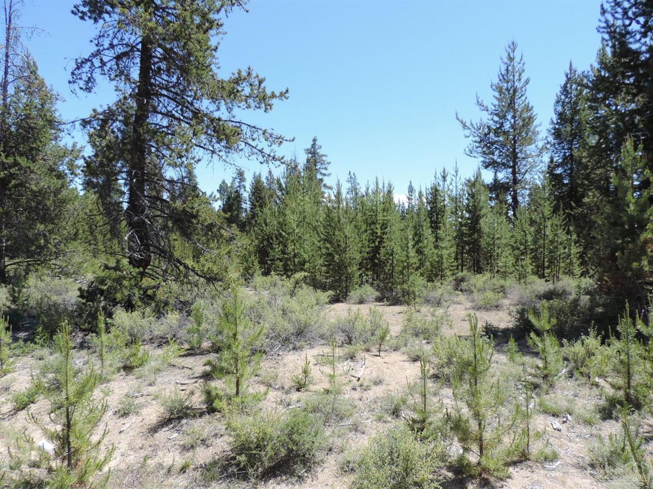 17 Mabel Drive, La Pine, OR 97739 (MLS #201607564) :: Birtola Garmyn High Desert Realty