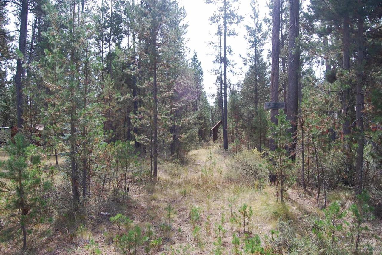 17377 Golden Eye Drive, Bend, OR 97707 (MLS #201609076) :: Birtola Garmyn High Desert Realty