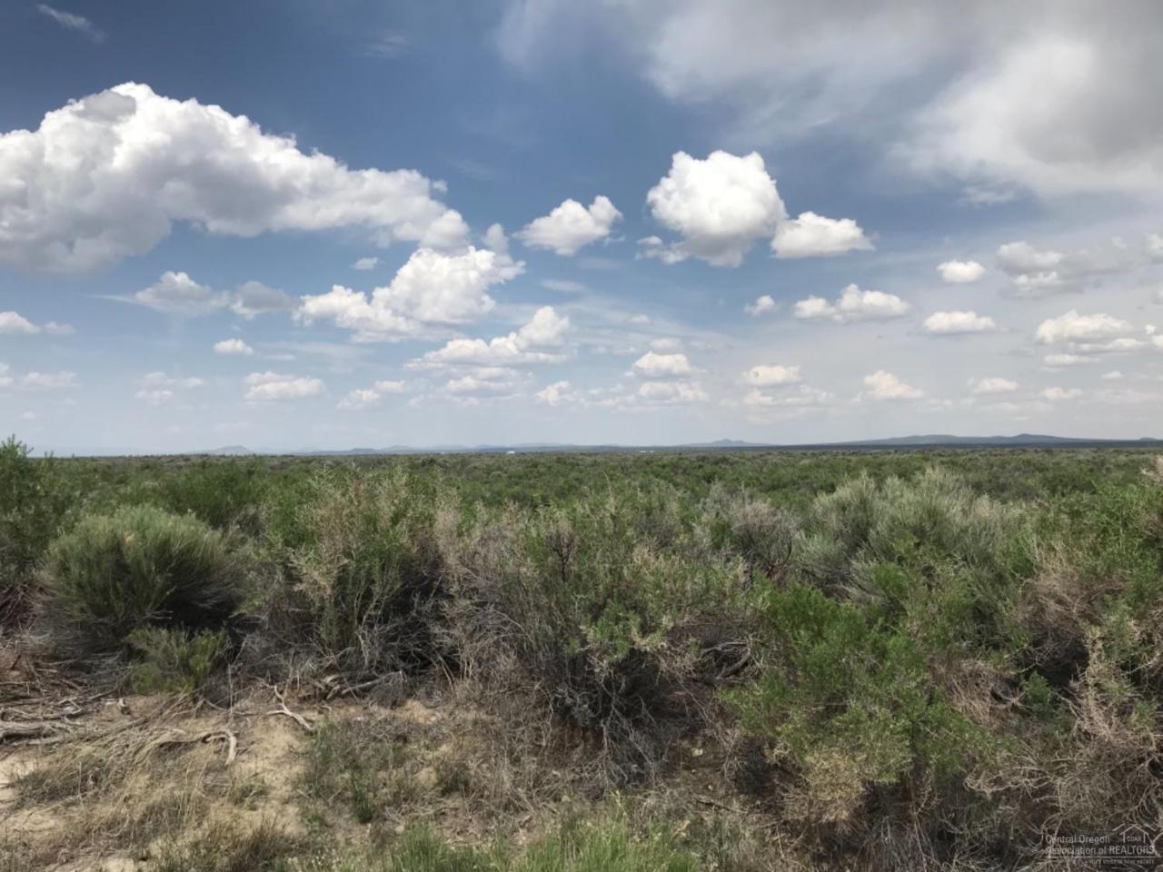 1700 Christmas Valley Highway - Photo 1