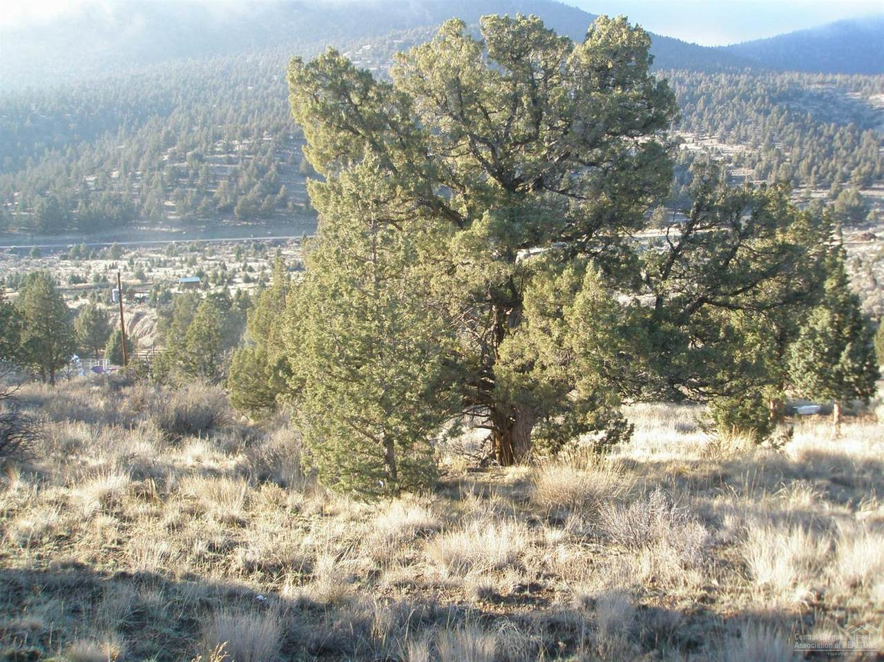 16624 Antelope Creek - Photo 1
