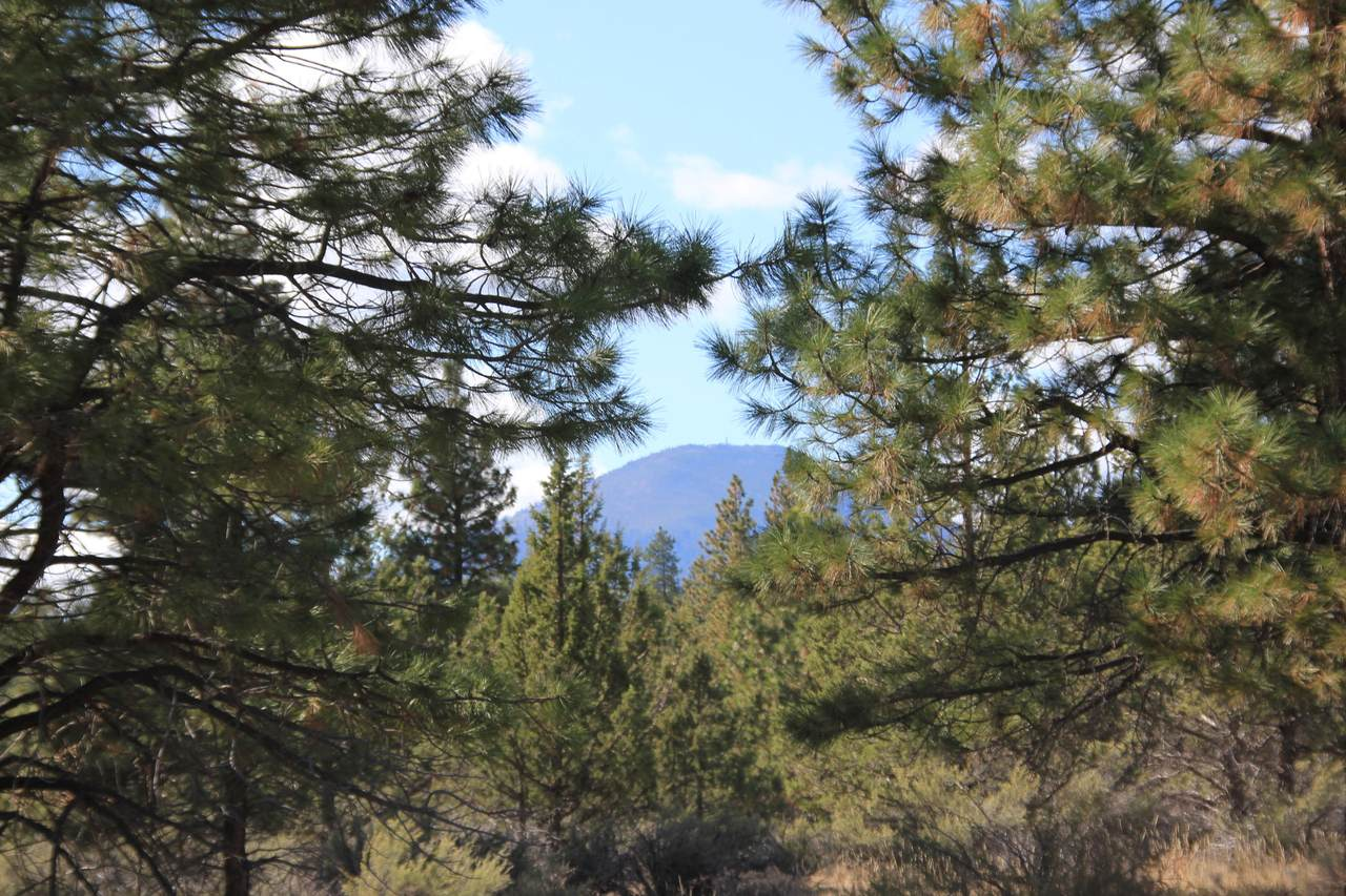 0 Stevens Canyon Road - Photo 1
