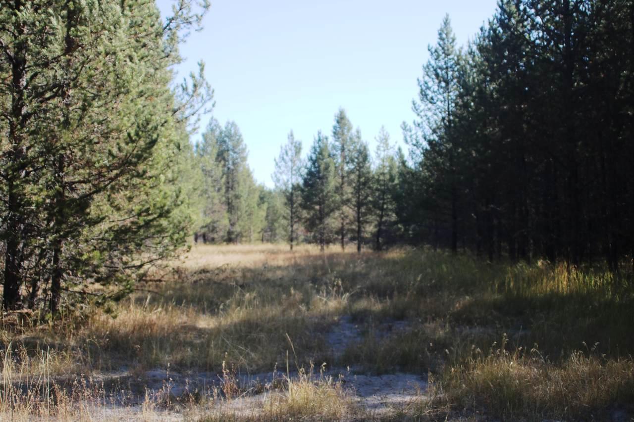 50950 Coyote Road - Photo 1