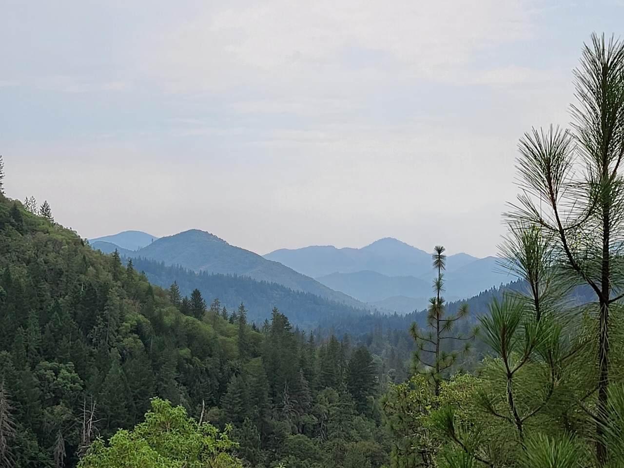 3471 Evans Creek Road - Photo 1