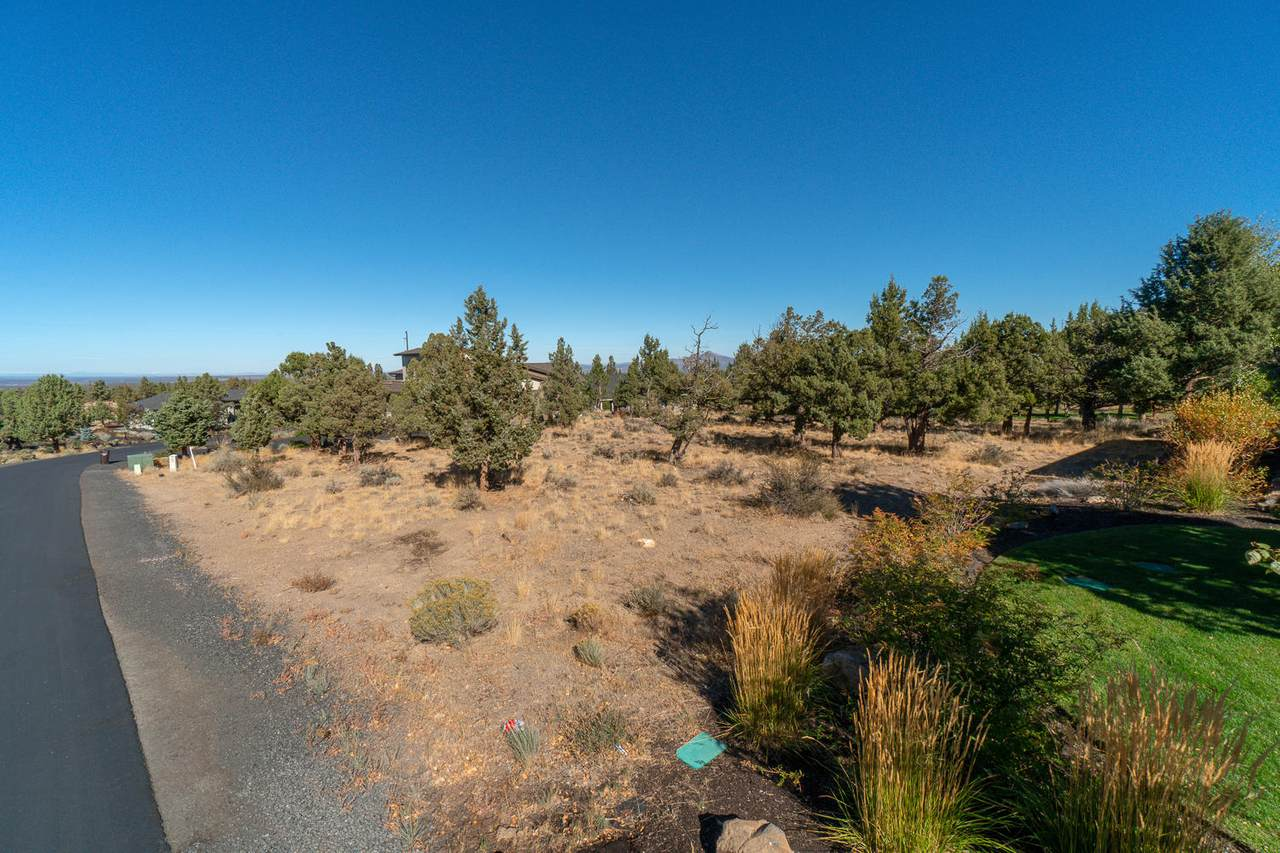 1012 Trail Creek Drive - Photo 1