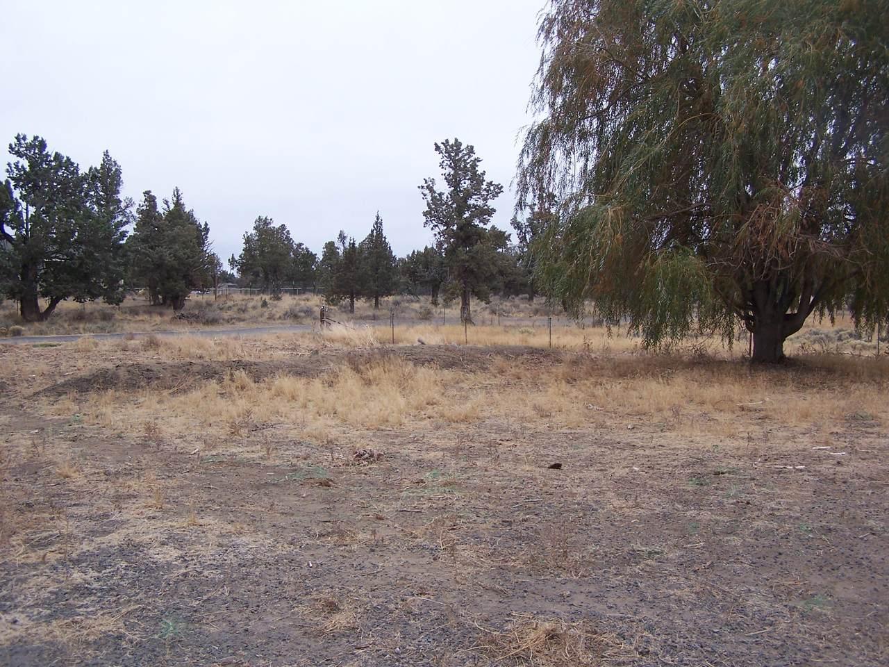 24804 Deer Lane - Photo 1