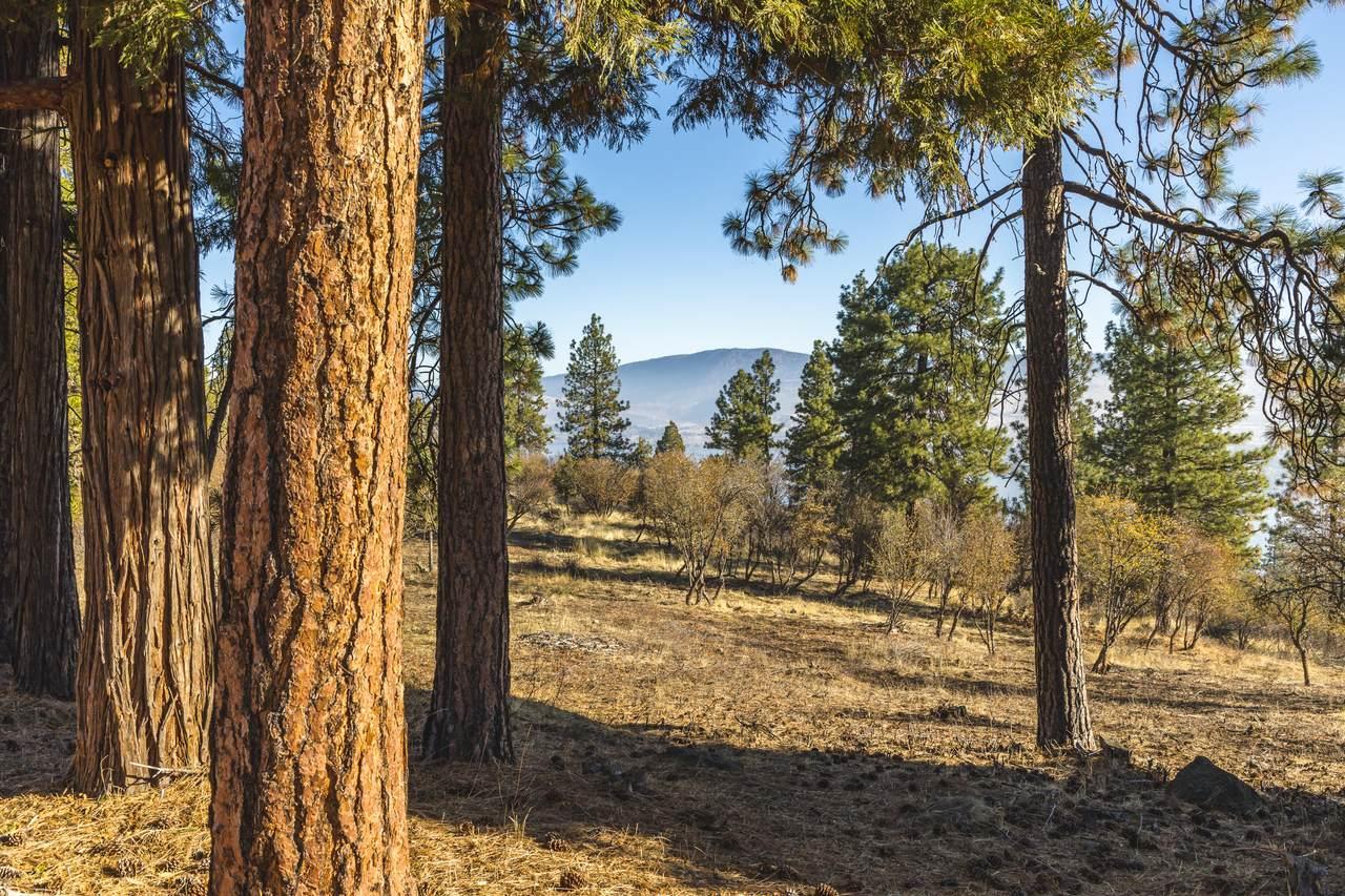 6051 Olson Mountain Way - Photo 1