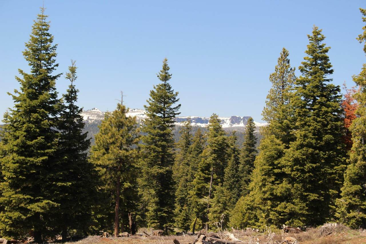 0 Road 212 - Deer Creek - 152 - Photo 1