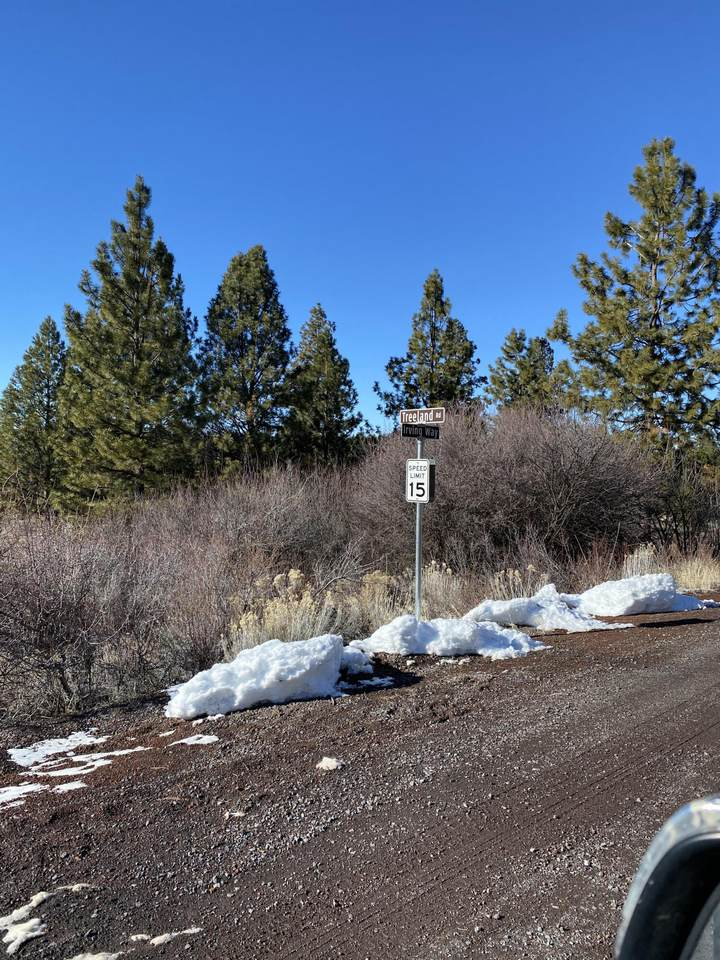 Treeland Road - Photo 1